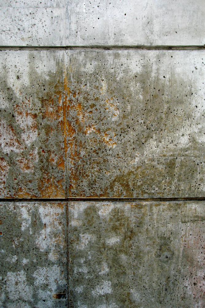 Abstract-outgrow IMG_5744